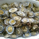Cozze Patelle (Limpets)... shellfish that can be eaten raw or in a sauce with spaghetti.