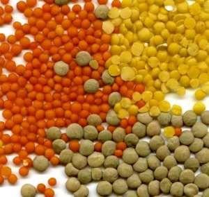 Lentils Recipes