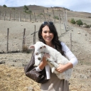 Sicily Tour 2015 - Day at the Farm