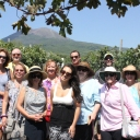 Sorrento Tour 2015 (402)